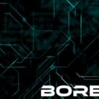 bor-head