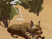 igra-tyto-ecology-obzor-ava